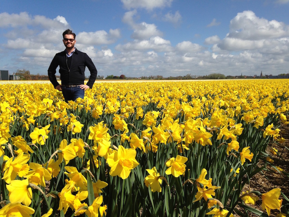 Holland in April in the Daffodil fields