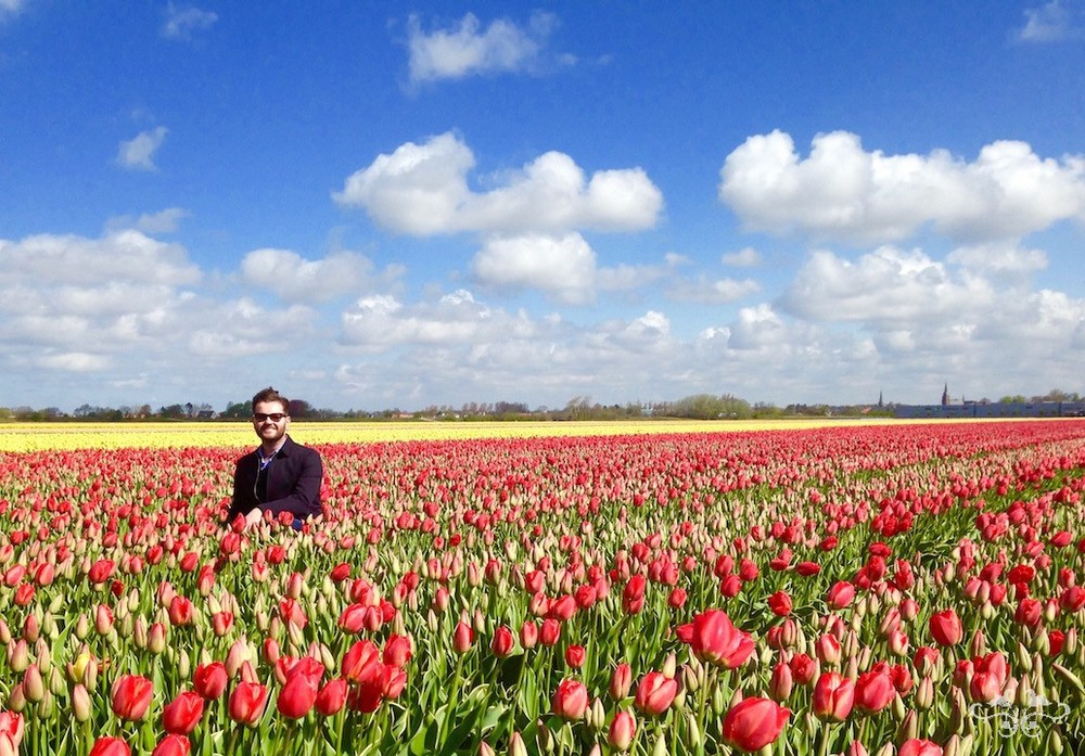 Neill Strain sourcing spring flowers in Holland includes a visit to the Tulip bulb fields.
