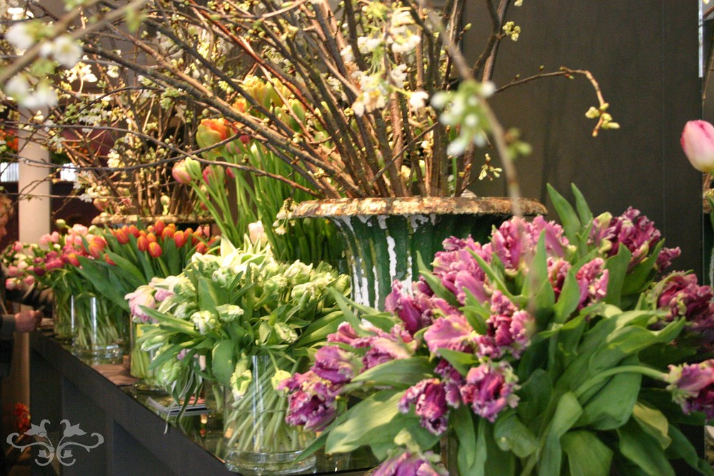 Many different varieties of gorgeous Tulips and Spring Flowers at Neill Strain's Belgravia boutique