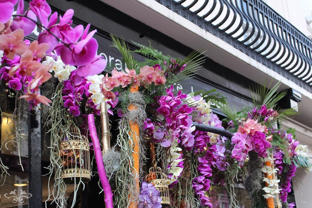 Neill Strain Orchids Belgravia Knightsbridge.jpg