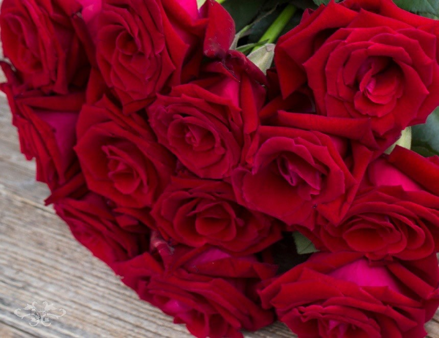 Scented red roses Valentines by Neill Strain Floral Couture