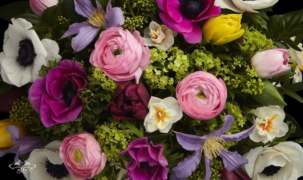Belgravia spring flower order online Neill Strain