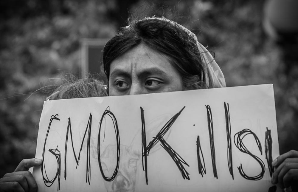 GMO Kills!.jpg