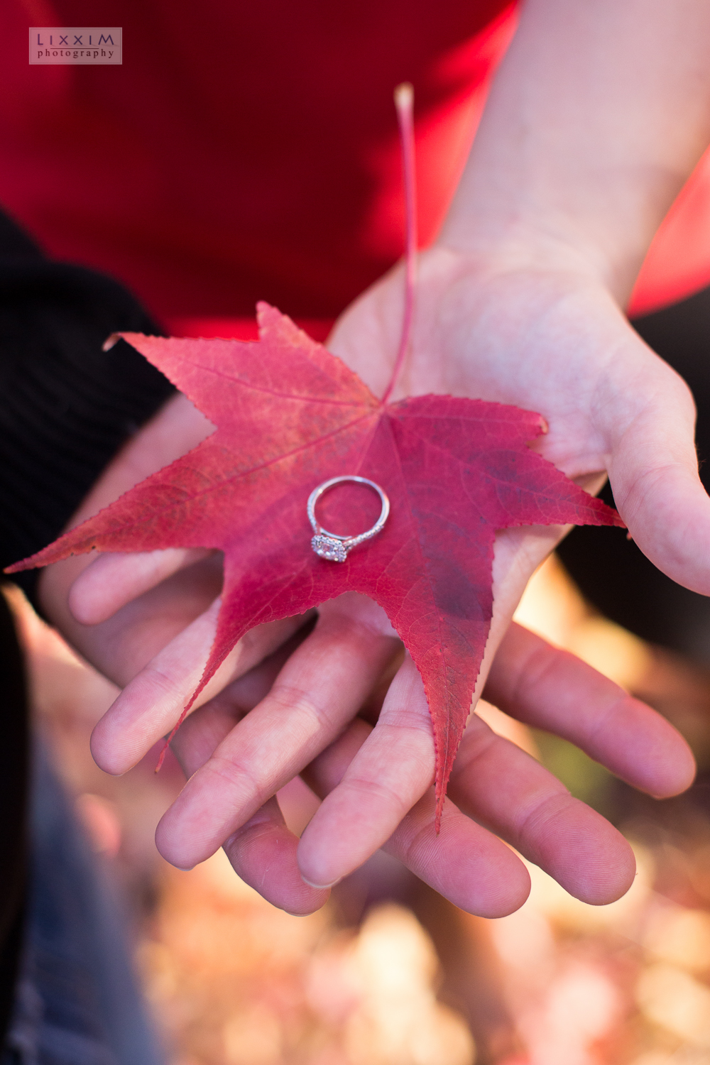 apple hill autumn fall engagement details