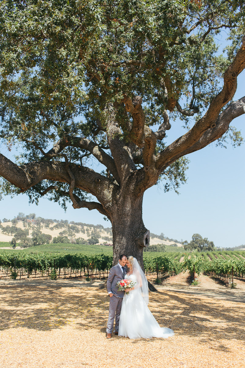 rancho-victoria-vineyard-wedding-plymouth-california-photographer-6.jpg