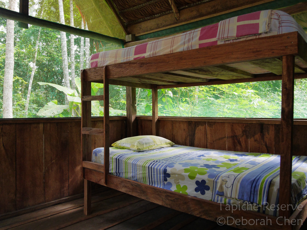 Interior of cabin with bunk beds