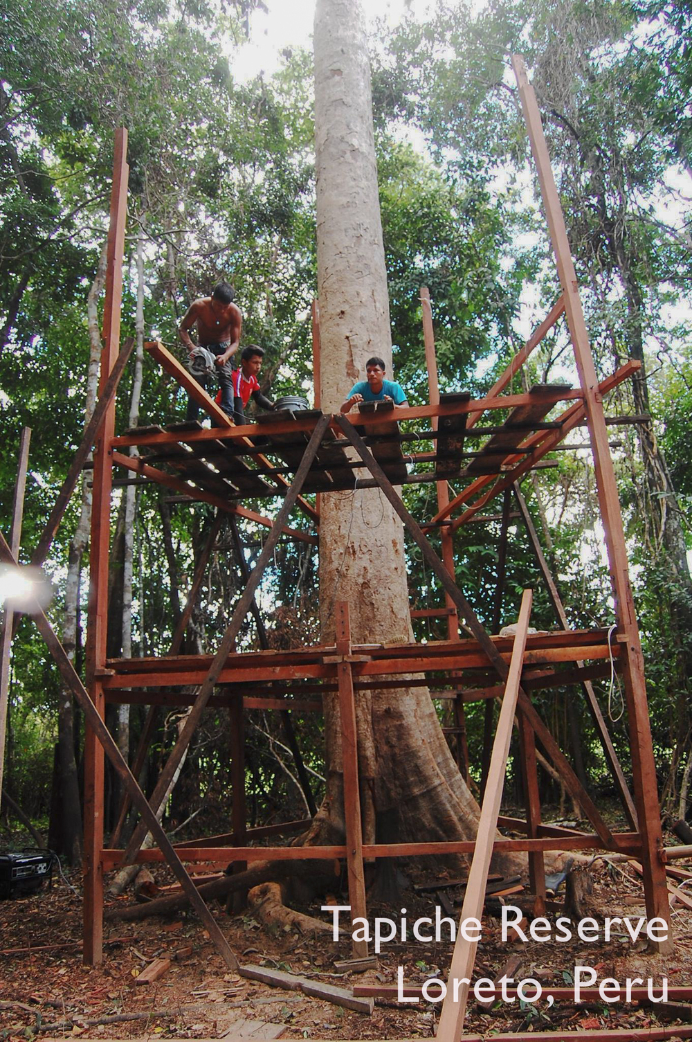 After 8 working days, the tower is almost halfway to its final height of 30-ish meters! Tapiche Reserve Jungle, Peru