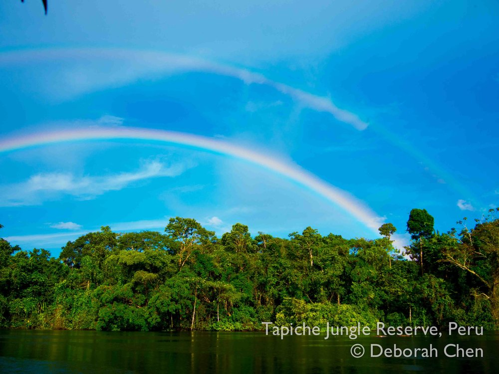 Tapiche-Amazon-Jungle-Tour-Peru-double-rainbow,jpg