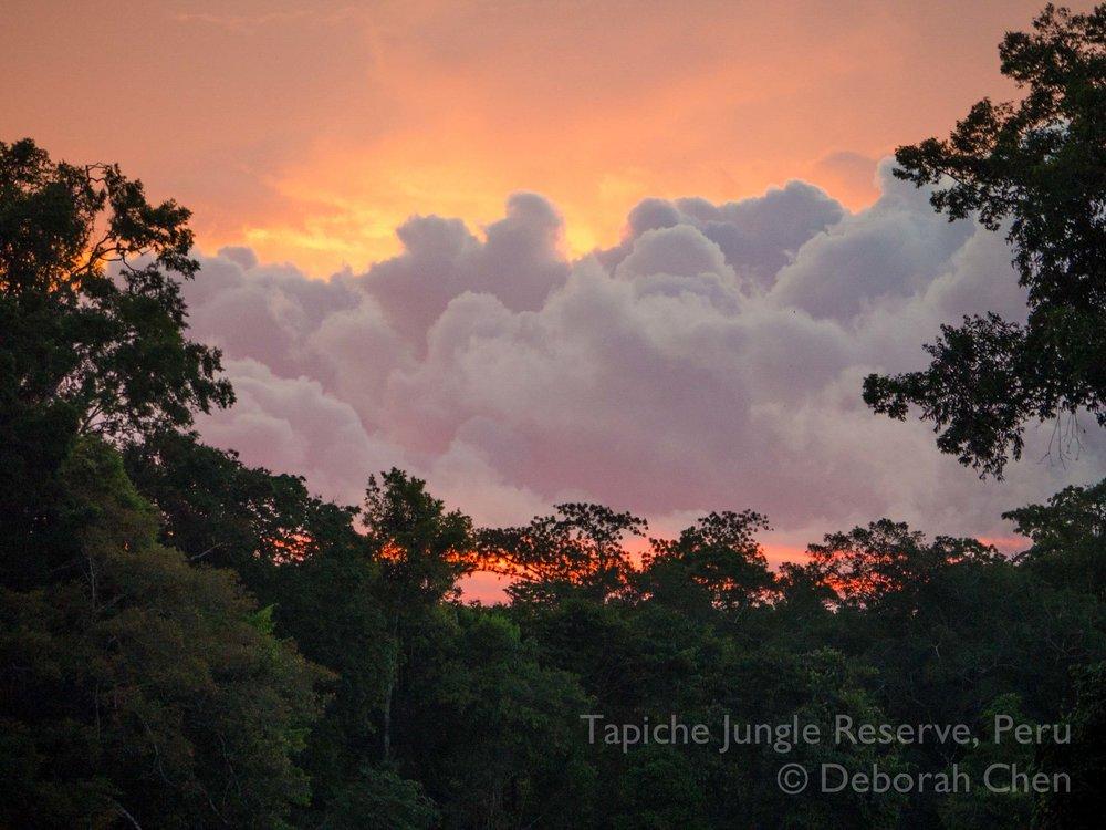 Tapiche-Amazon-Jungle-Tour-Peru-orange-sunset.jpg