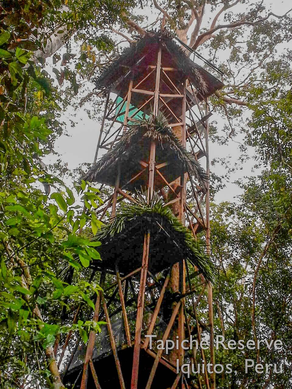 Tapiche-Amazon-Jungle-Tour-Peru-canopy-observation-tower-7.jpg