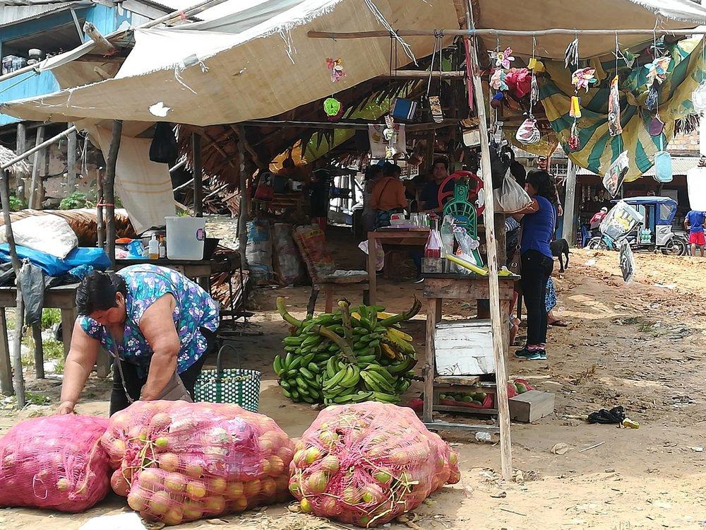 Tapiche-Amazon-Jungle-Tour-Requena-port.jpg