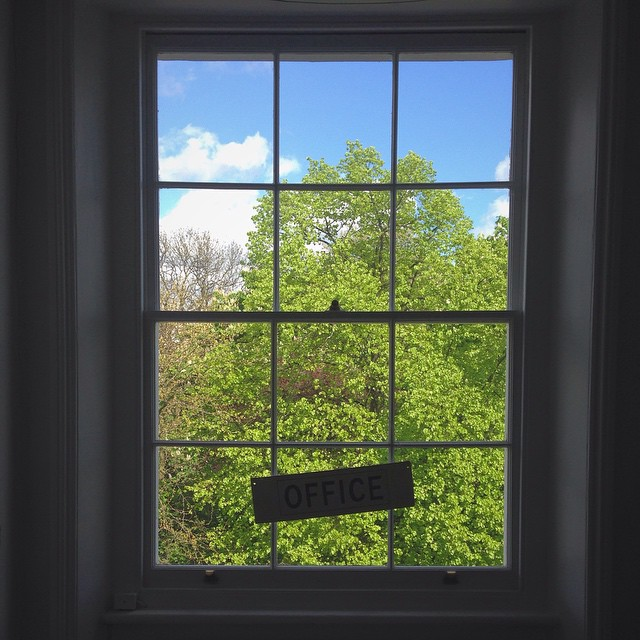 Office window. #studio #thornhillsq #N1 #spring #chestnut #yeshandtash