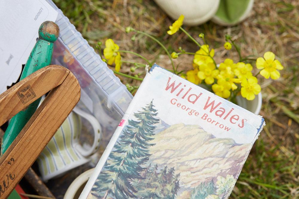 Wild Wales indeed