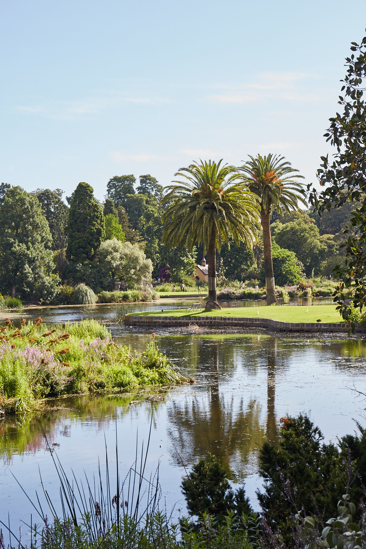 Melbourne-Botanical-Gardens3009.jpg