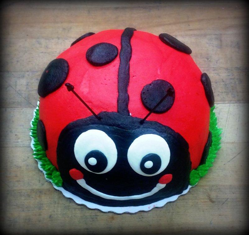 Lady Bug Petite Cake