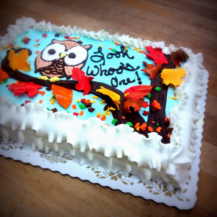 Look Whoo S One Sheet Cake Trefzger S Bakery