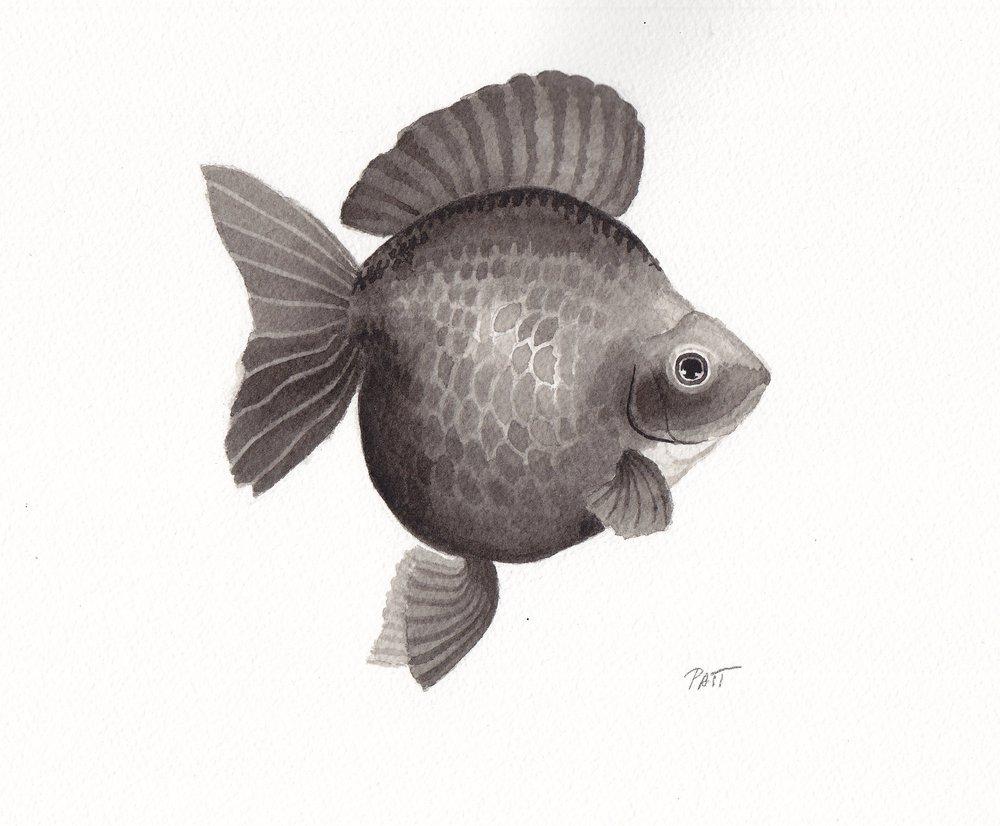 Fish5a small.jpg