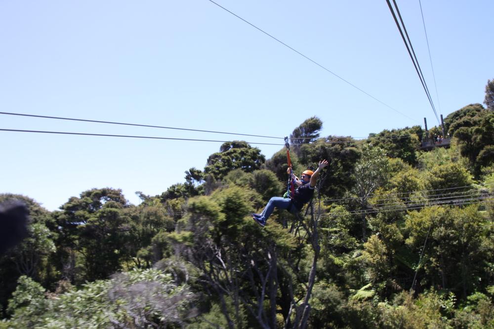 Ziplining Waiheke Island