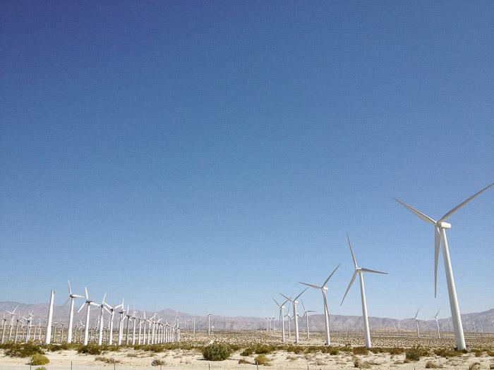 Coachella-22.jpg