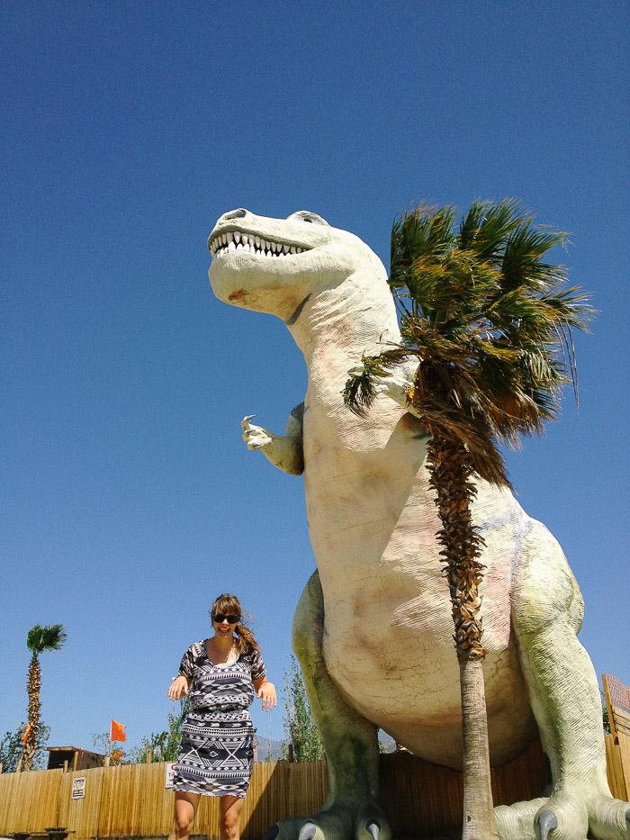 Coachella-25.jpg