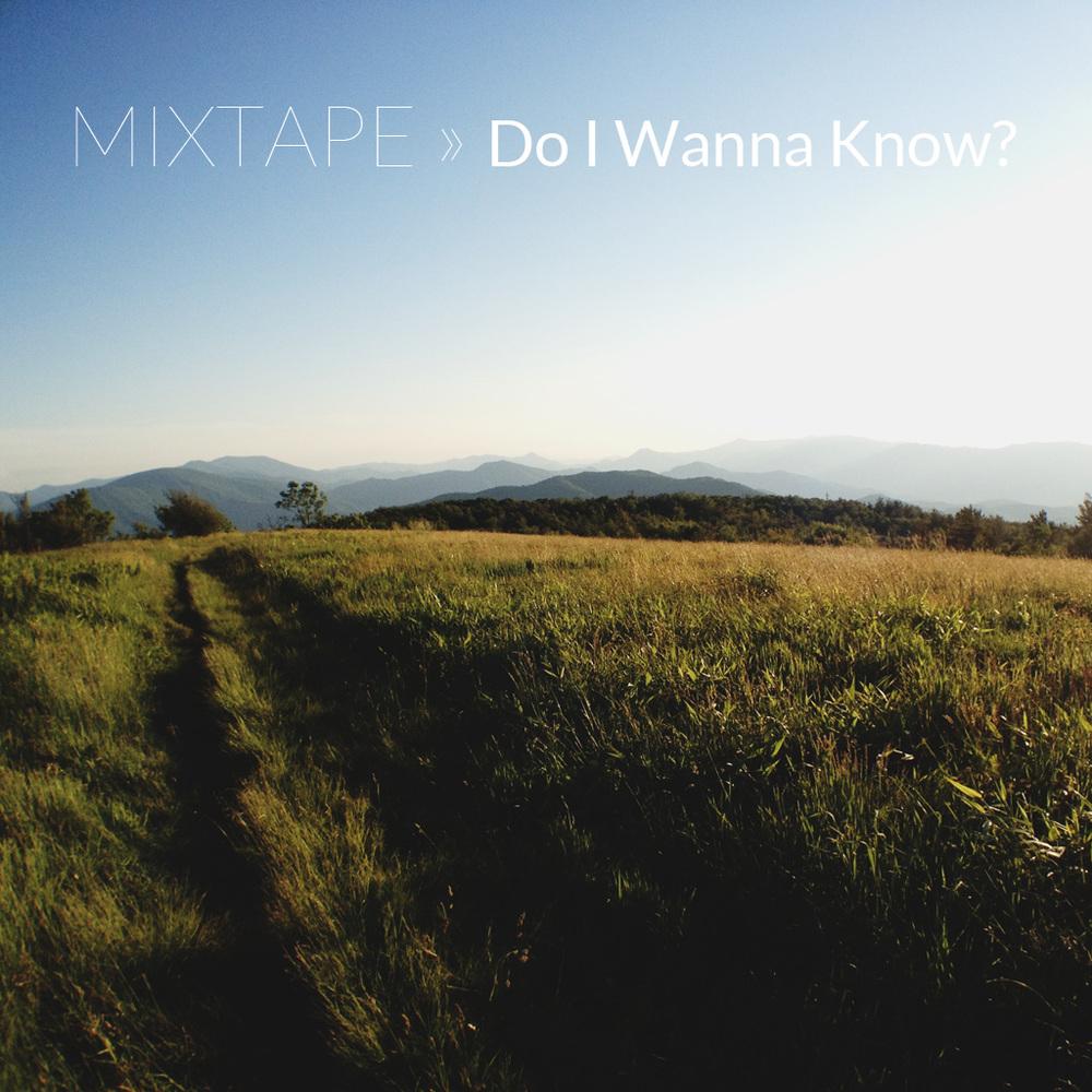 Mixtape06_DoIWannaKnow.jpg
