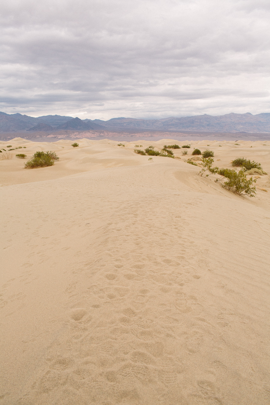 death-valley-061.jpg