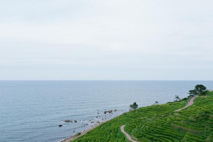 japan-road-trip-0605.jpg
