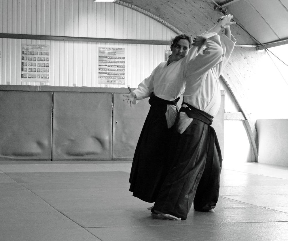 katadori shiho nage 9.jpg