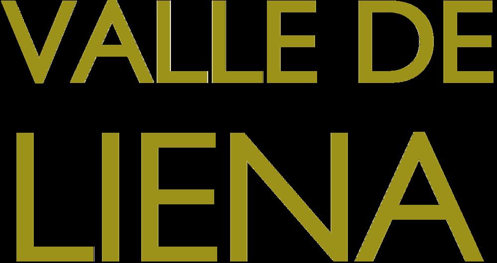 Valle_deLiena_EMOTE_Branding_logo.png