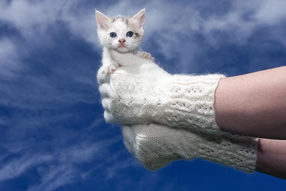 Mohair gloves