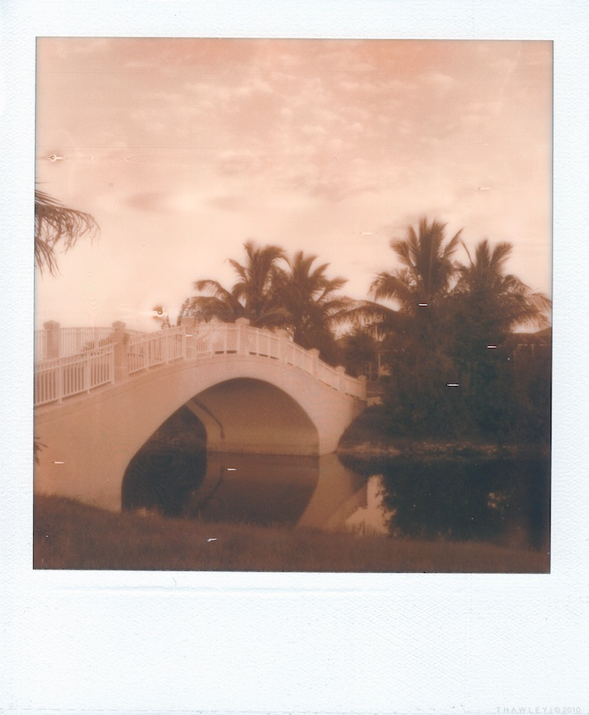 bridge1_600uv+.jpg