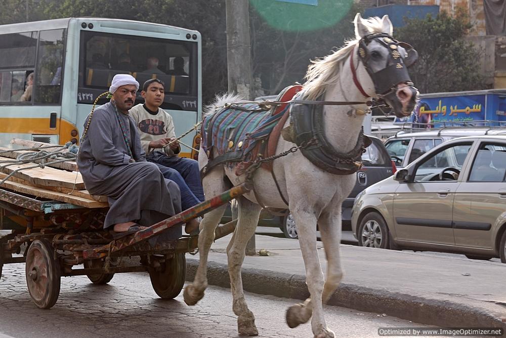 Cairo Istanbul I 168.jpg