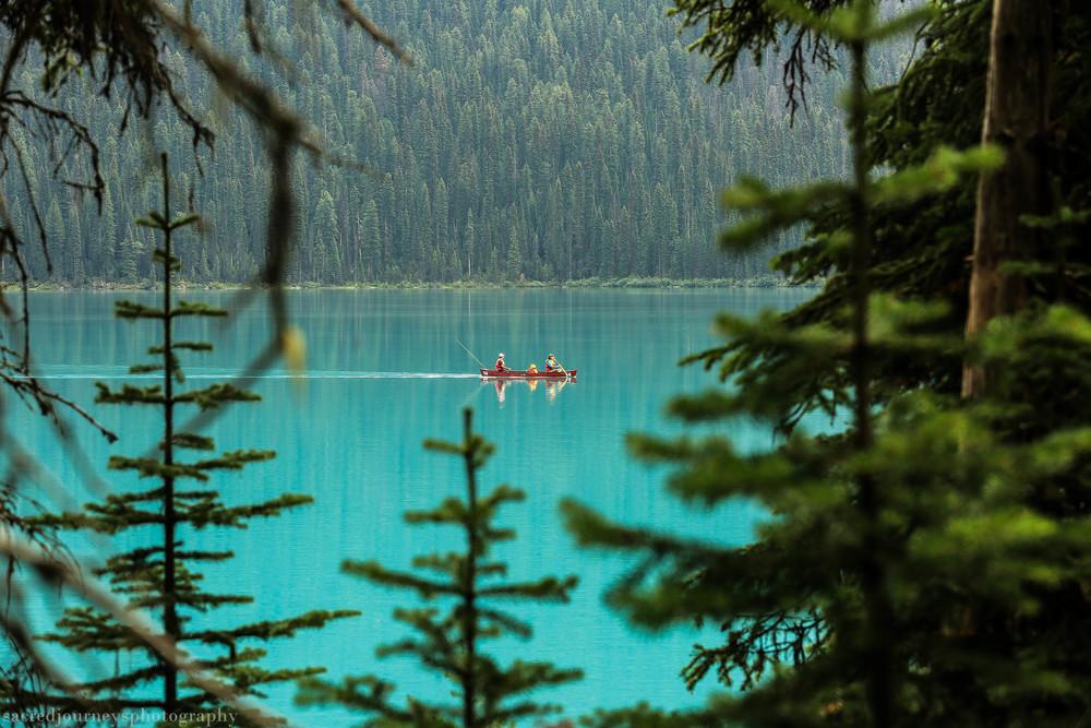 Emerald Lake Yoho National Forest British Columbia