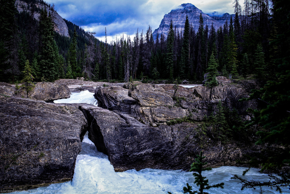 Natural Bridge near Emerald Lake Yoho National Forest British Columbia Canada