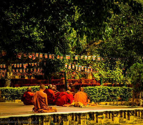 Meditation under the Bodhi Tree at                        The Maha Bodhi Temple