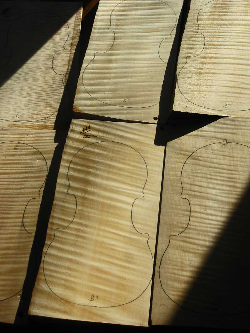 One-piece Bosnian violin backs.