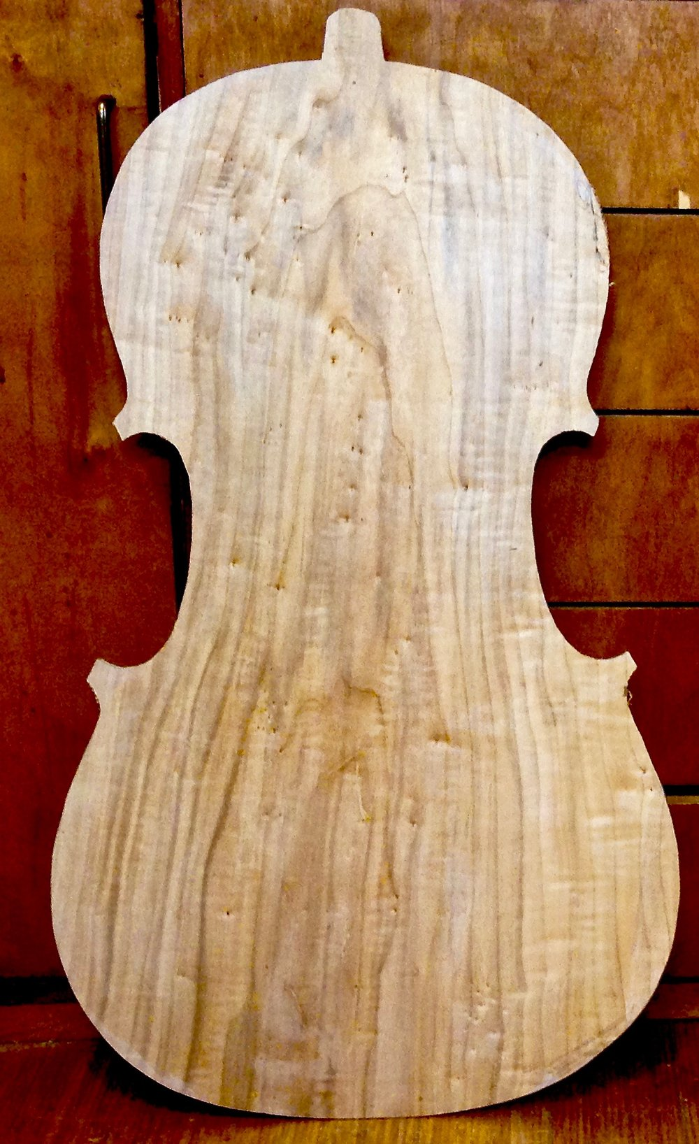 A poplar cello back. The grain stands out more than maple and the figure is more subtle, with knots and birdseyes.