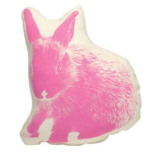 SAL-bunny-pico.jpg