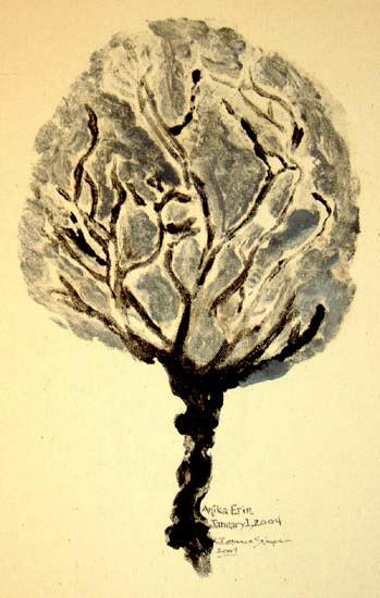 placenta-5.jpg