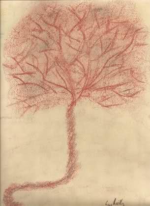 placenta-6.jpg