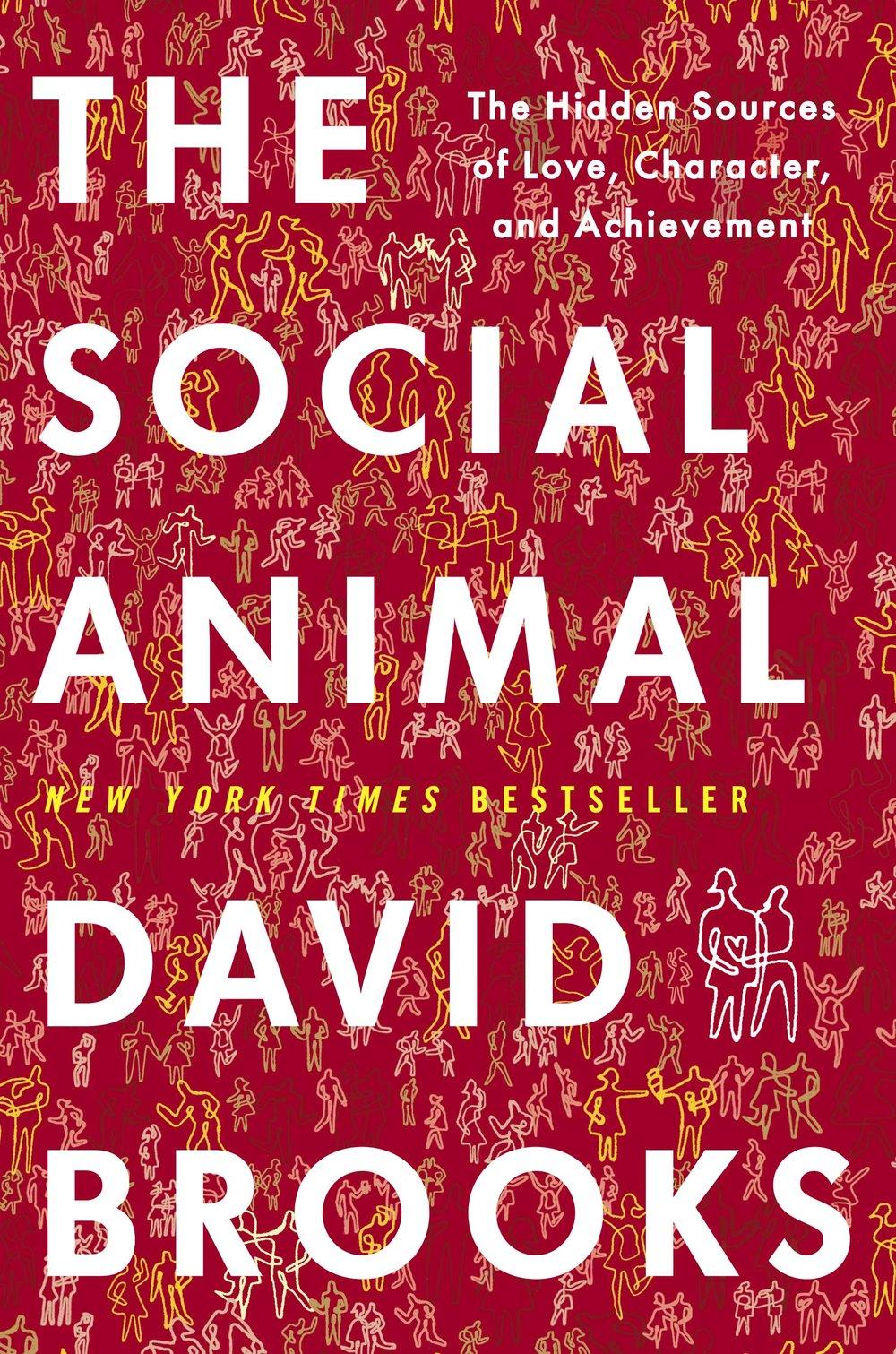 social-animal.jpg