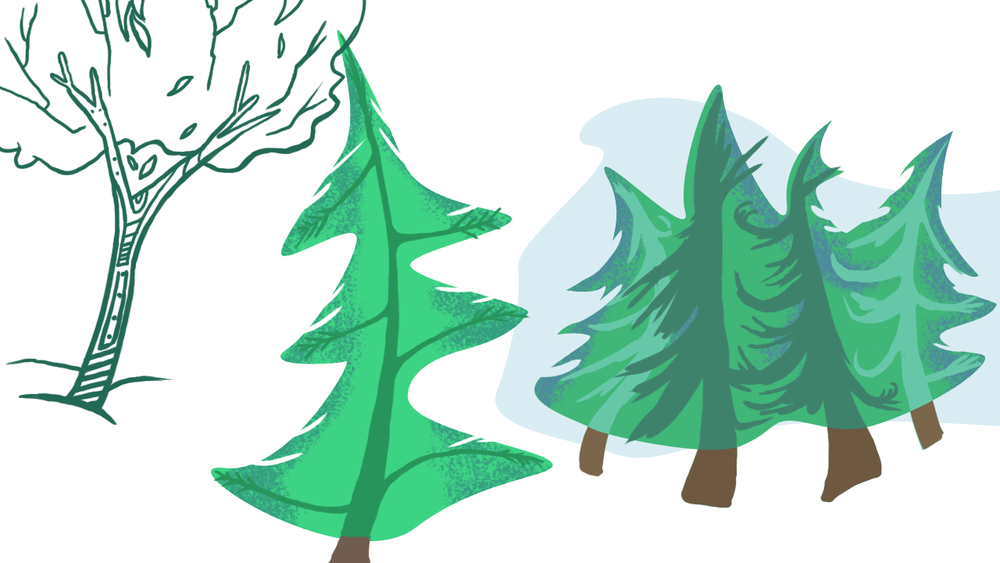 Trees_Try.png