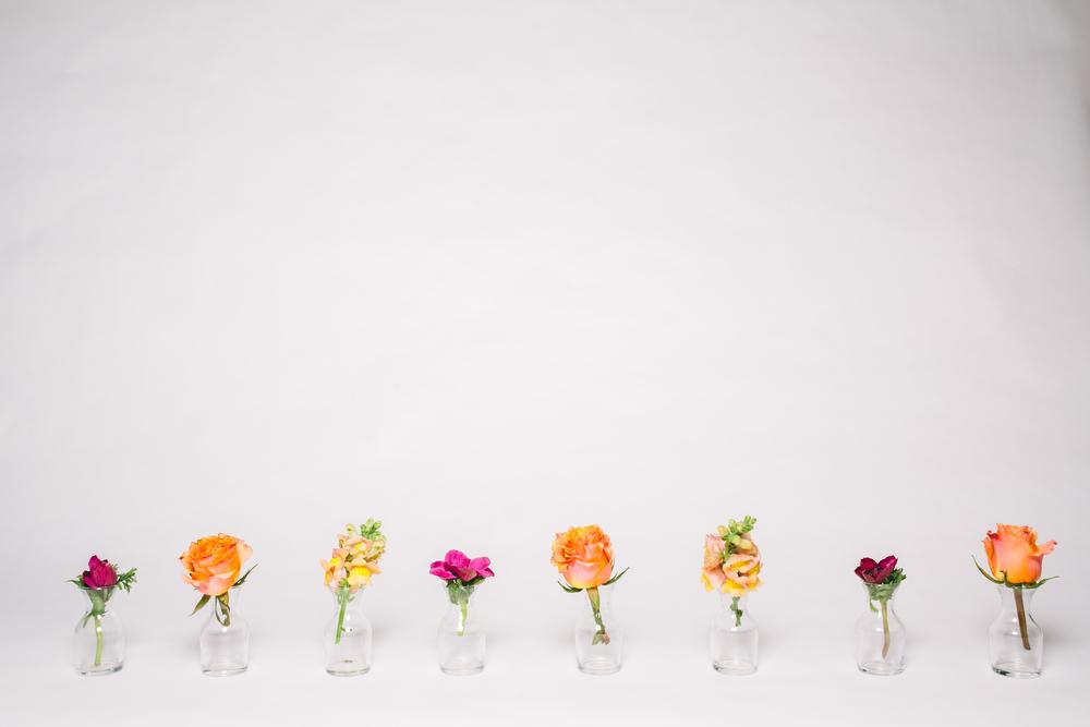 pretty_flowers-7847.jpg