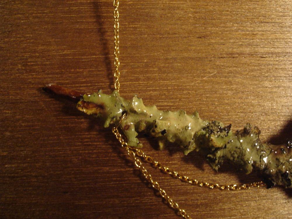 LICHEN - tree jewels