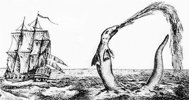 Sea serpent reported by Hans Egede, Bishop of Greenland, in 1734. Henry Lee suggested the giant squid as an explanation. Source:  Wikimedia Commons