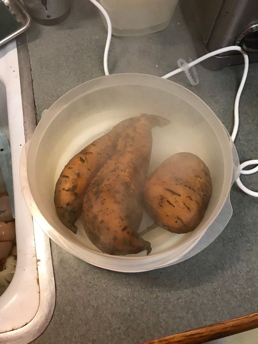 cooling sweet potatoes