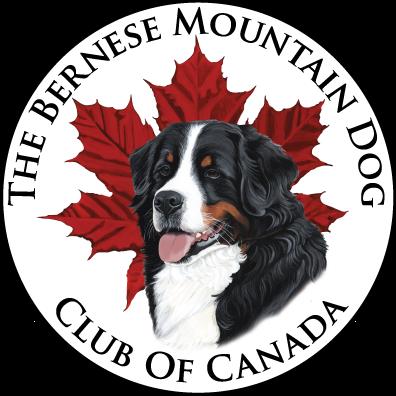 BMDCC-Logo-trans.png