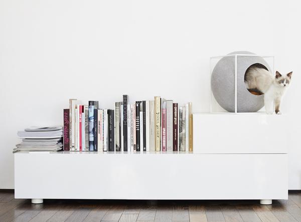 the-cube-cat-furniture-in-bookshelves.jpg