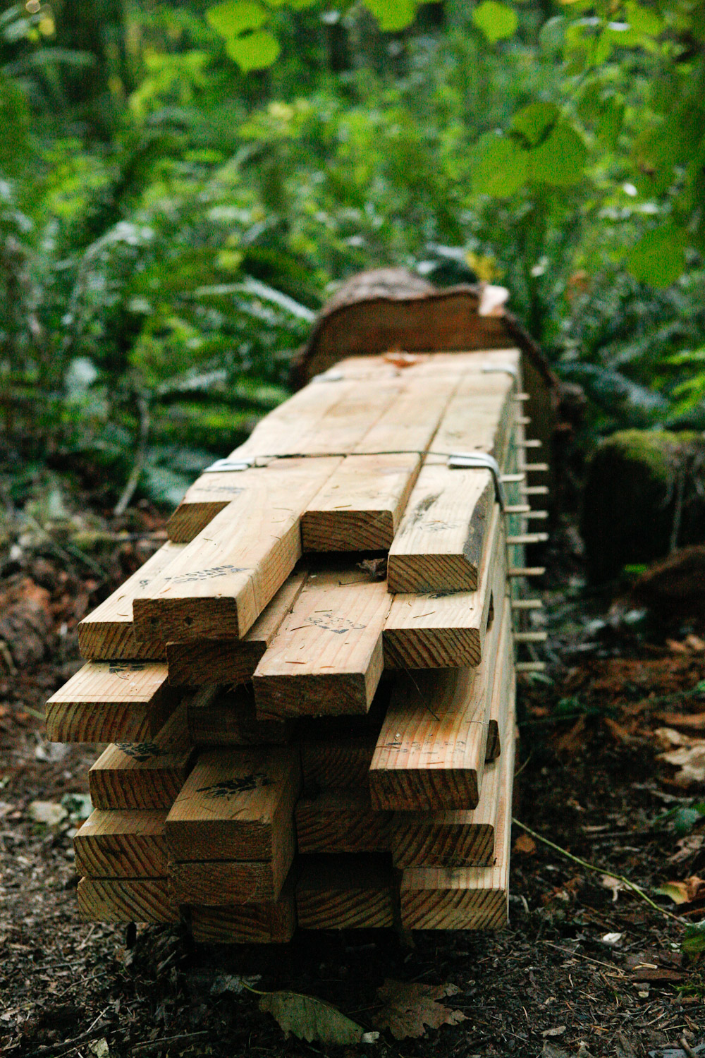 Lumber-Unit_The-Source-Series_imonen-8794.jpg