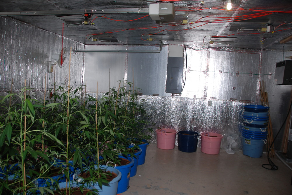 PHOTO:  Once inside, Police and Fire personnel located an elaborate marijuana grow operation.  Once it was determined that there were no occupants in the home, Police and Fire personnel vacated the residence and Cape Coral Police began a narcotics investigation.  (Photo Courtesy of Cape Coral Police Department)